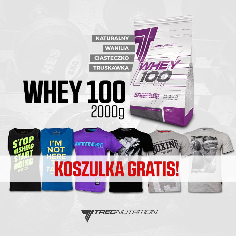 whey 100 active